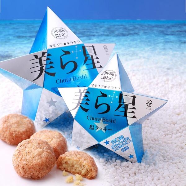 画像1: 美ら星 塩クッキー